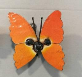 Papillon - 5 couleurs différentes