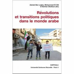 Révolutions arabes et transitions dans le monde arabe